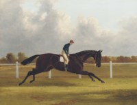 Major Yarburgh's brown colt, Charles XII, winner of the 1839 St. Leger, with William Scott up